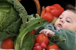 acelgas y espinacas y bebes
